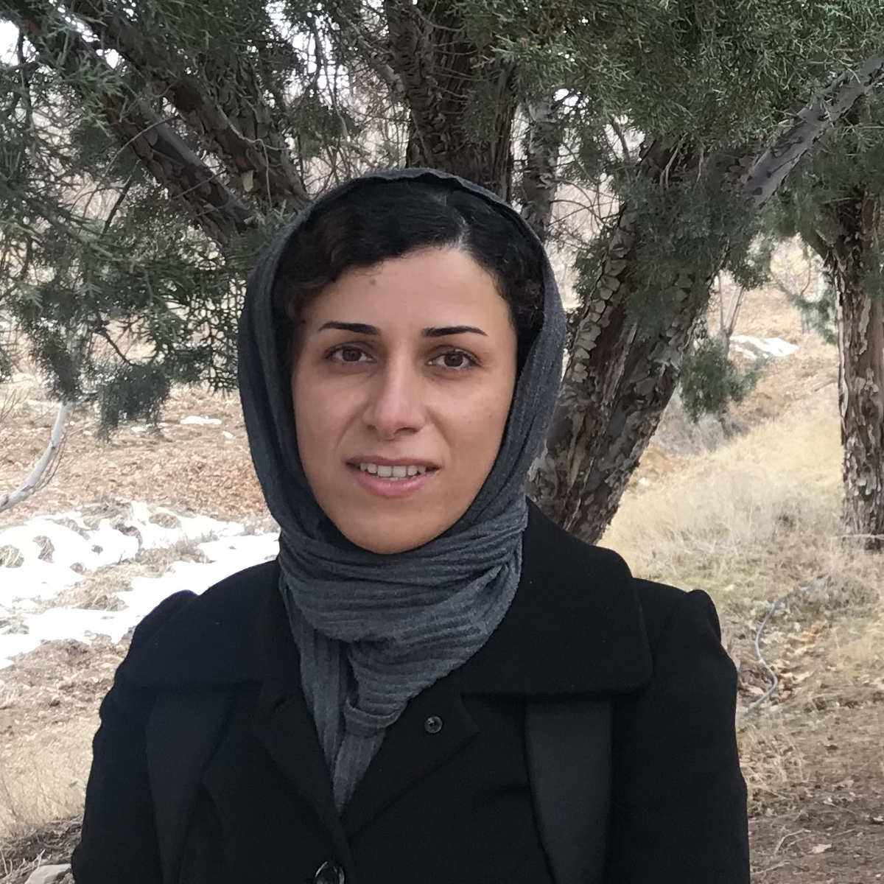 Faegheh Hajizadeh