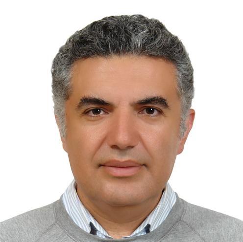 Mohsen Kompany-Zareh