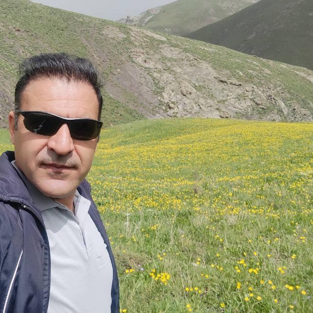 Salman Khodayifar