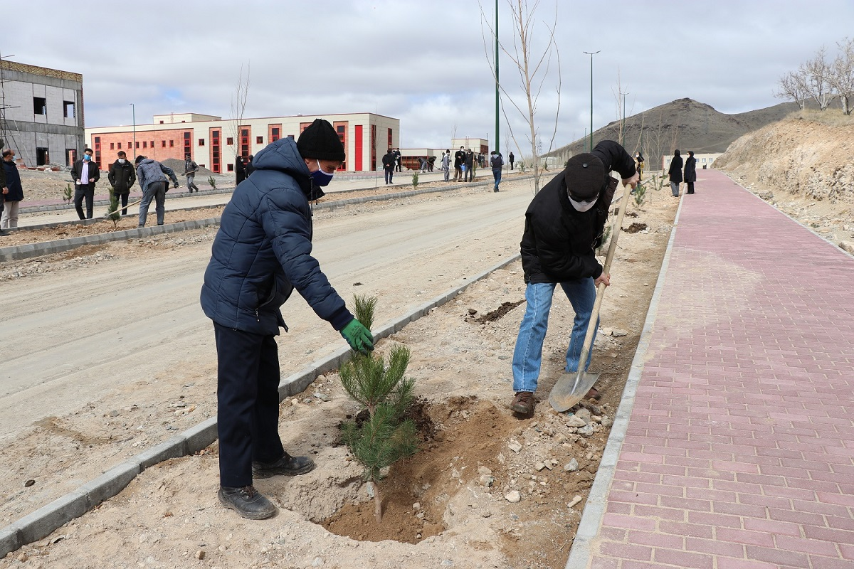 Young trees planted at IASBS; health protocols & social distancing observed